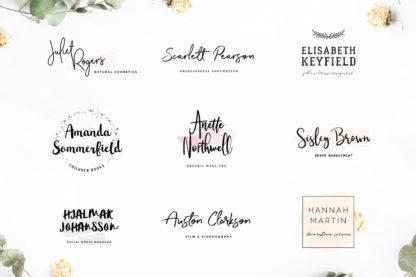 Typographer's Dream Box + 200 Logos - logos 2 -
