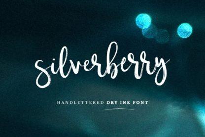 Typographer's Dream Box + 200 Logos - 17 silverberry -