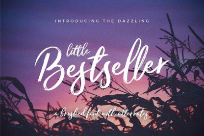 Typographer's Dream Box + 200 Logos - 15 little bestseller -