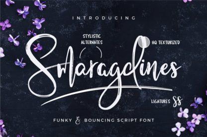 Typographer's Dream Box + 200 Logos - 14 smaragdines -