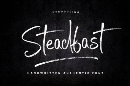 Typographer's Dream Box + 200 Logos - 13 steadfast -