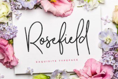Typographer's Dream Box + 200 Logos - 11 rosefield -