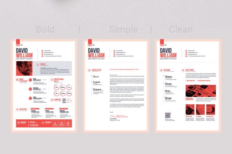 Resume Template - 11 Resume light version -