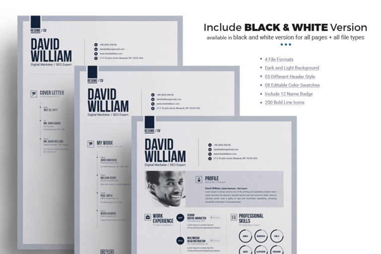 Resume Template - 13 Black and White Resume -