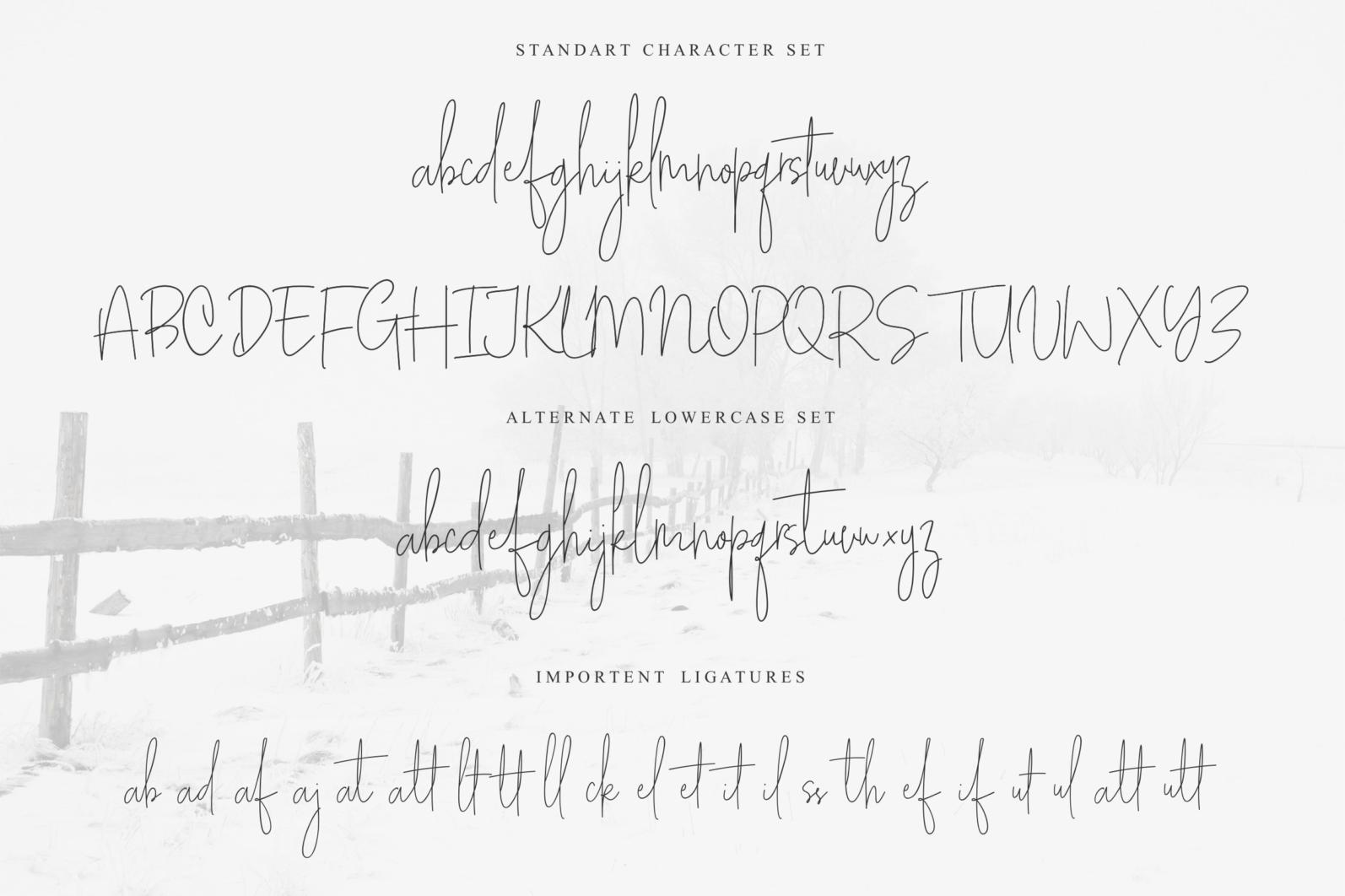 White Apparel | Script Font - White Apparel 05 -