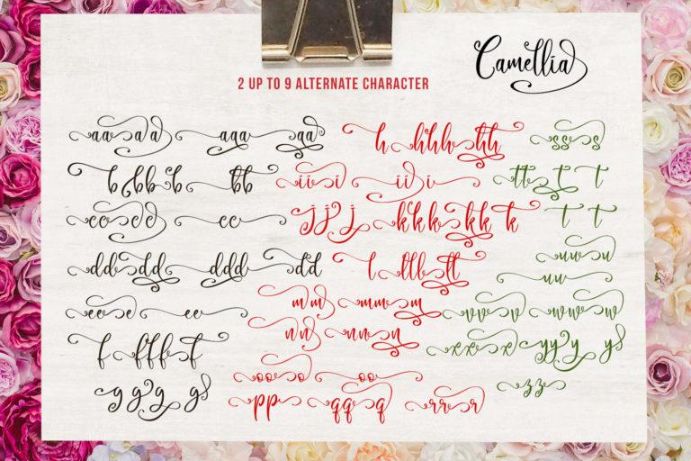 Camellia Script - Camellia 6 -