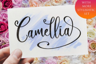 Font Deals - Powerful Script & Calligraphy Fonts for just $1 - Camellia 1 -