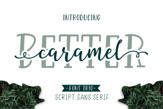 Font Deals - Powerful Script & Calligraphy Fonts for just $1 - 001 -