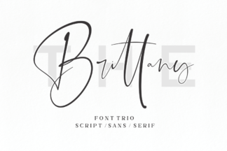 Font Deals - Powerful Script & Calligraphy Fonts for just $1 - 09 -