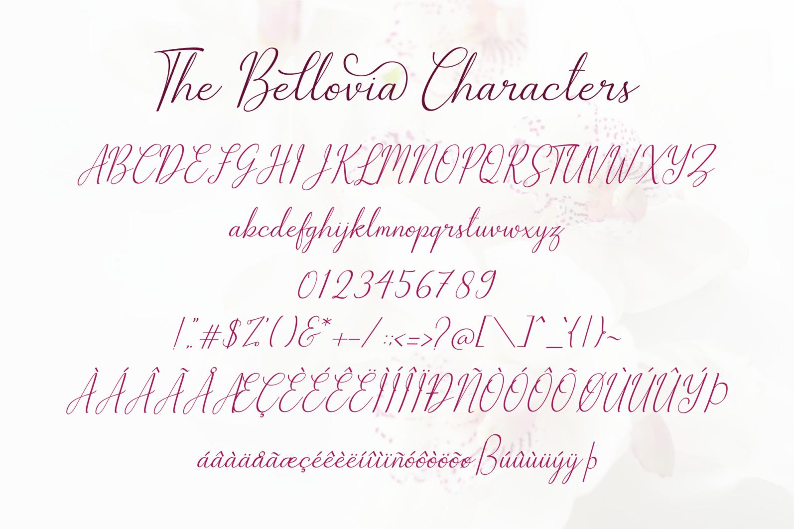 The Bellovia - Font Duo - The Bellovia Prev11 -
