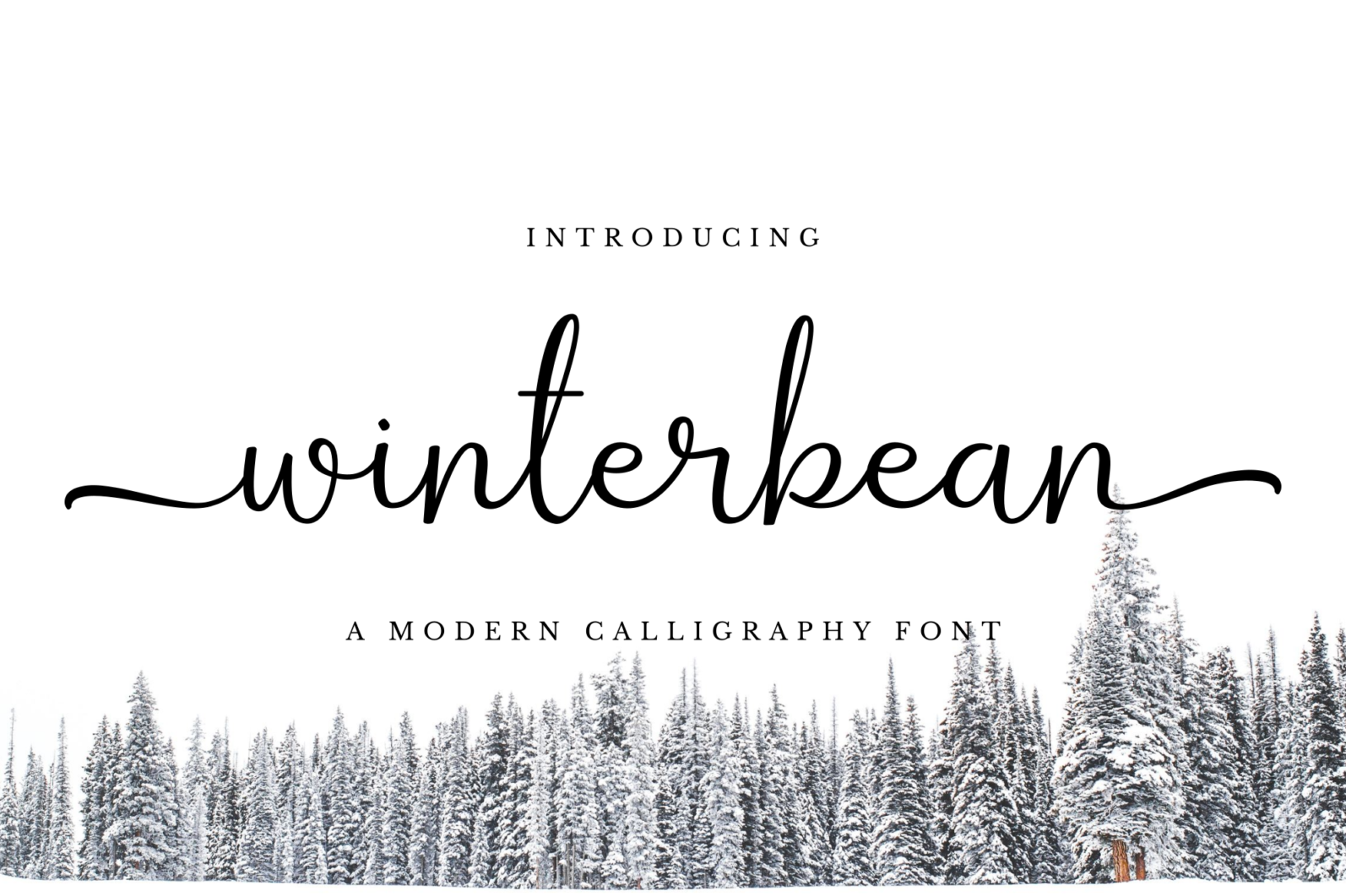 Winterbean - Winterbean prev1 -