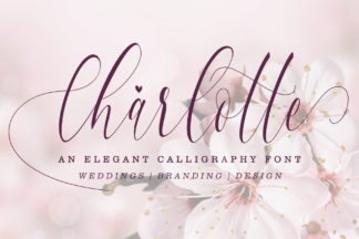Font Deals - Powerful Script & Calligraphy Fonts for just $1 - Preview Charlotte 001 -