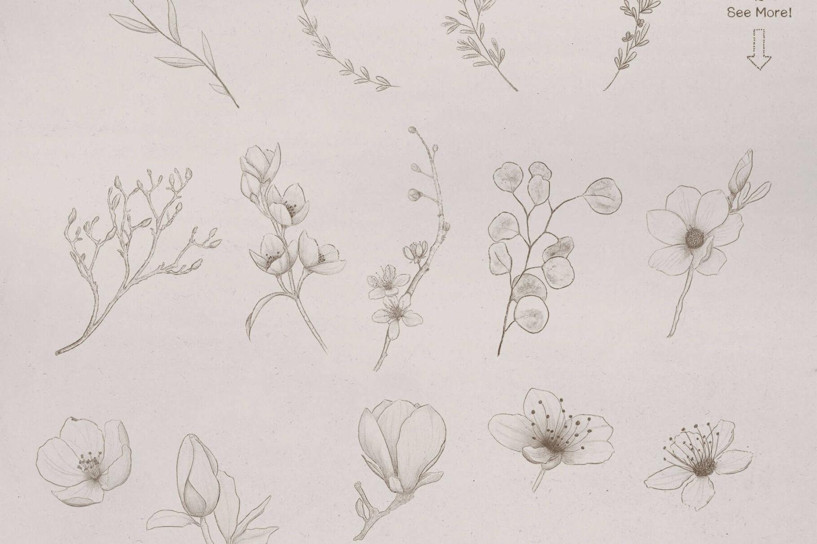 Sketchy Floral Wreaths & Borders - sketchy botanicals page -