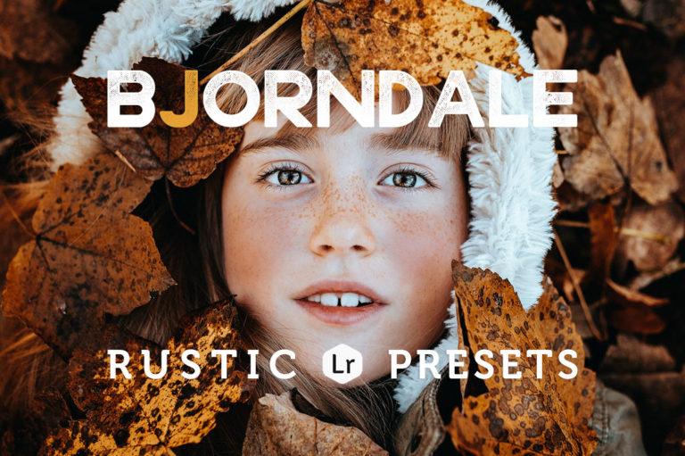Bjorndale Presets for Desktop & Mobile - bjorndale cover cr -