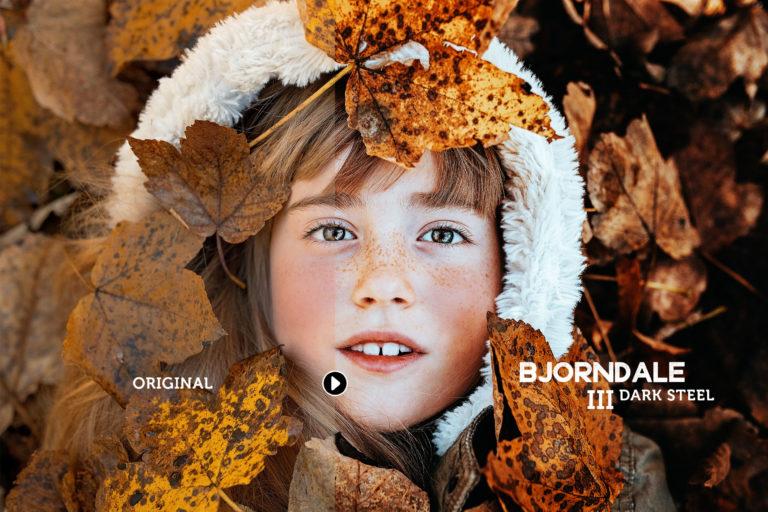 Bjorndale Presets for Desktop & Mobile - bjorndale preview03 -