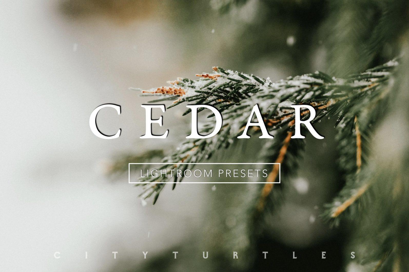CEDAR Subtle Moody Lightroom Presets for Desktop & Mobile - cedar moody presets 1 -