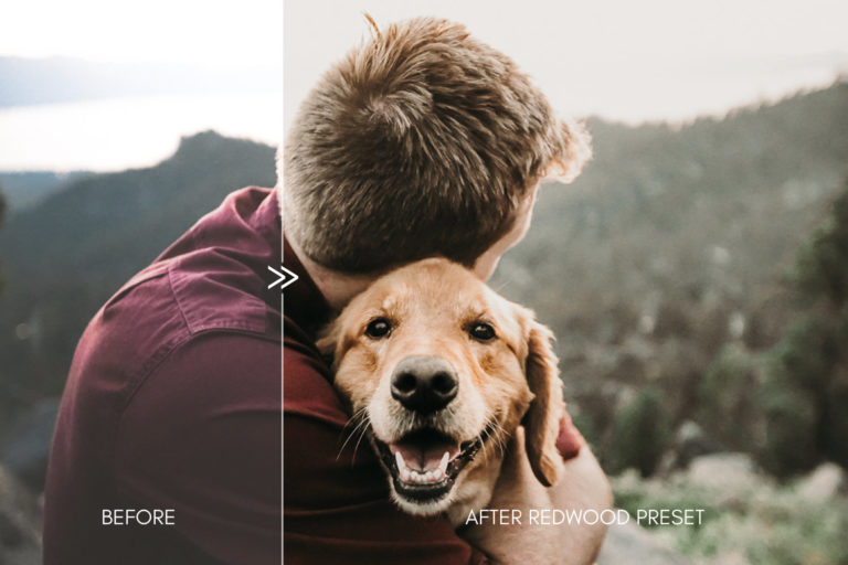 Moody Pet Photography Kit THE GREAT OUTDOORS Lightroom Presets for Desktop & Mobile - great outdoors pet presets 7 -