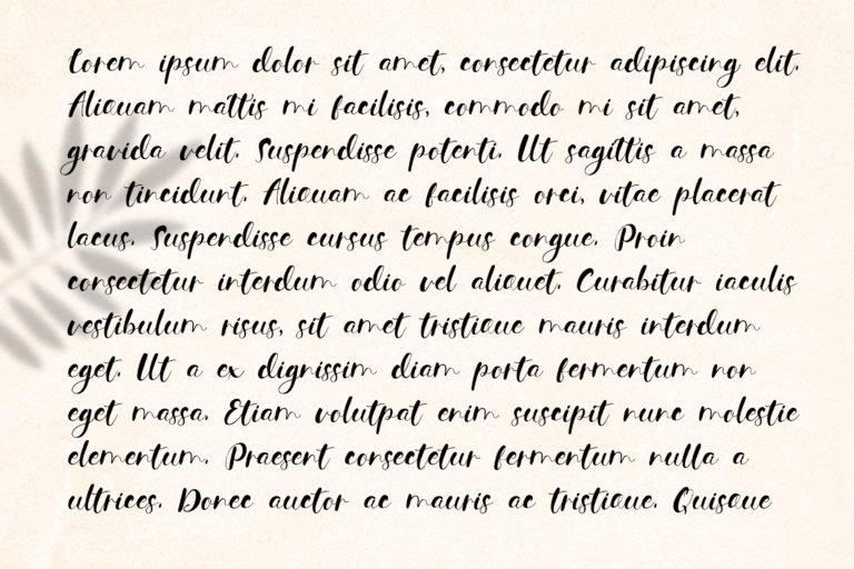 Contener Handwritting font - 1030 -