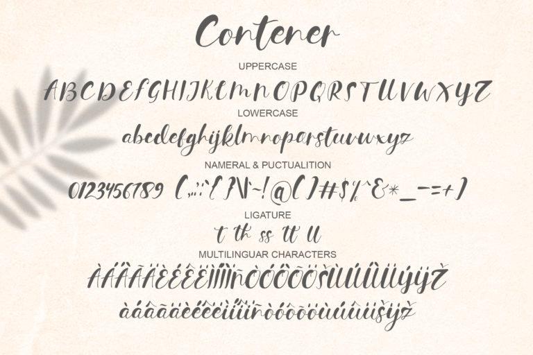 Contener Handwritting font - 1187 -