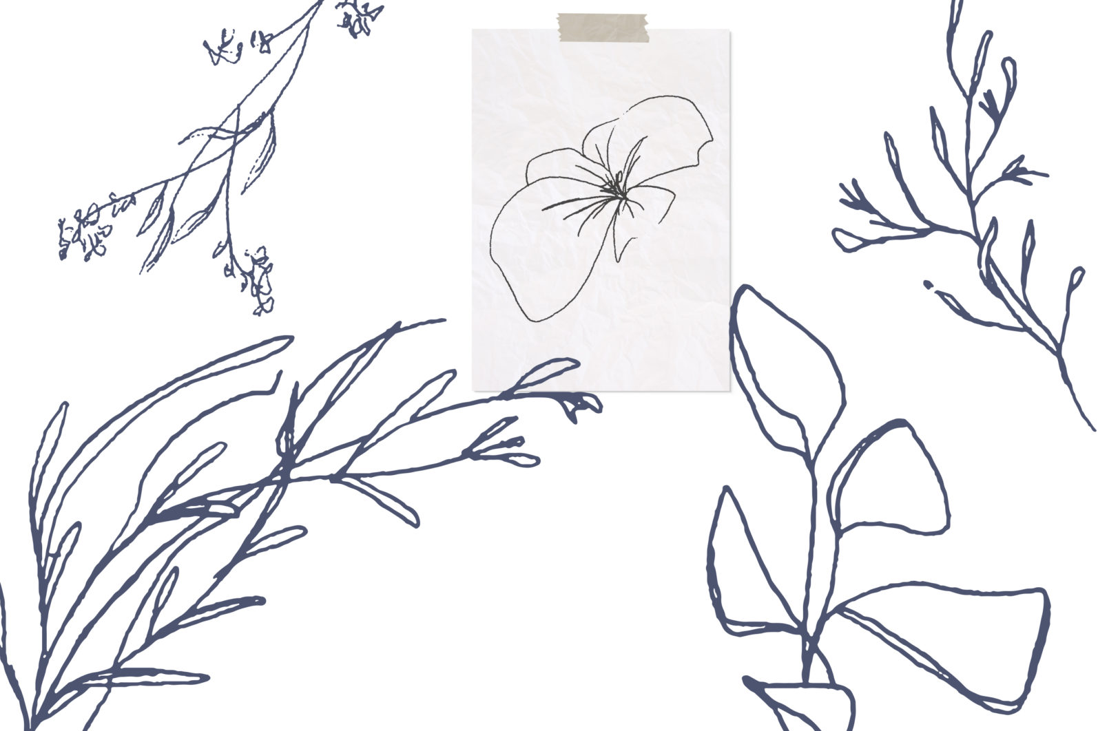 Floral pencil drawing one line art elements, Vector - etsy pencil preview -
