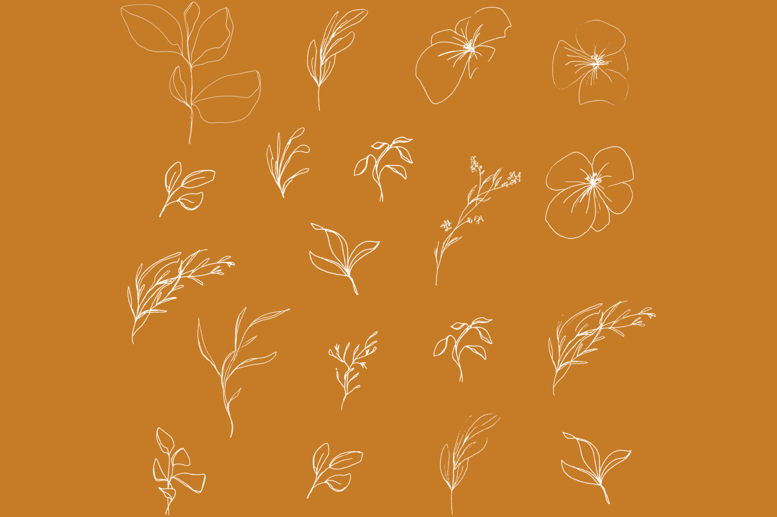 Floral pencil drawing one line art elements, Vector - etsy pencil preview4 -
