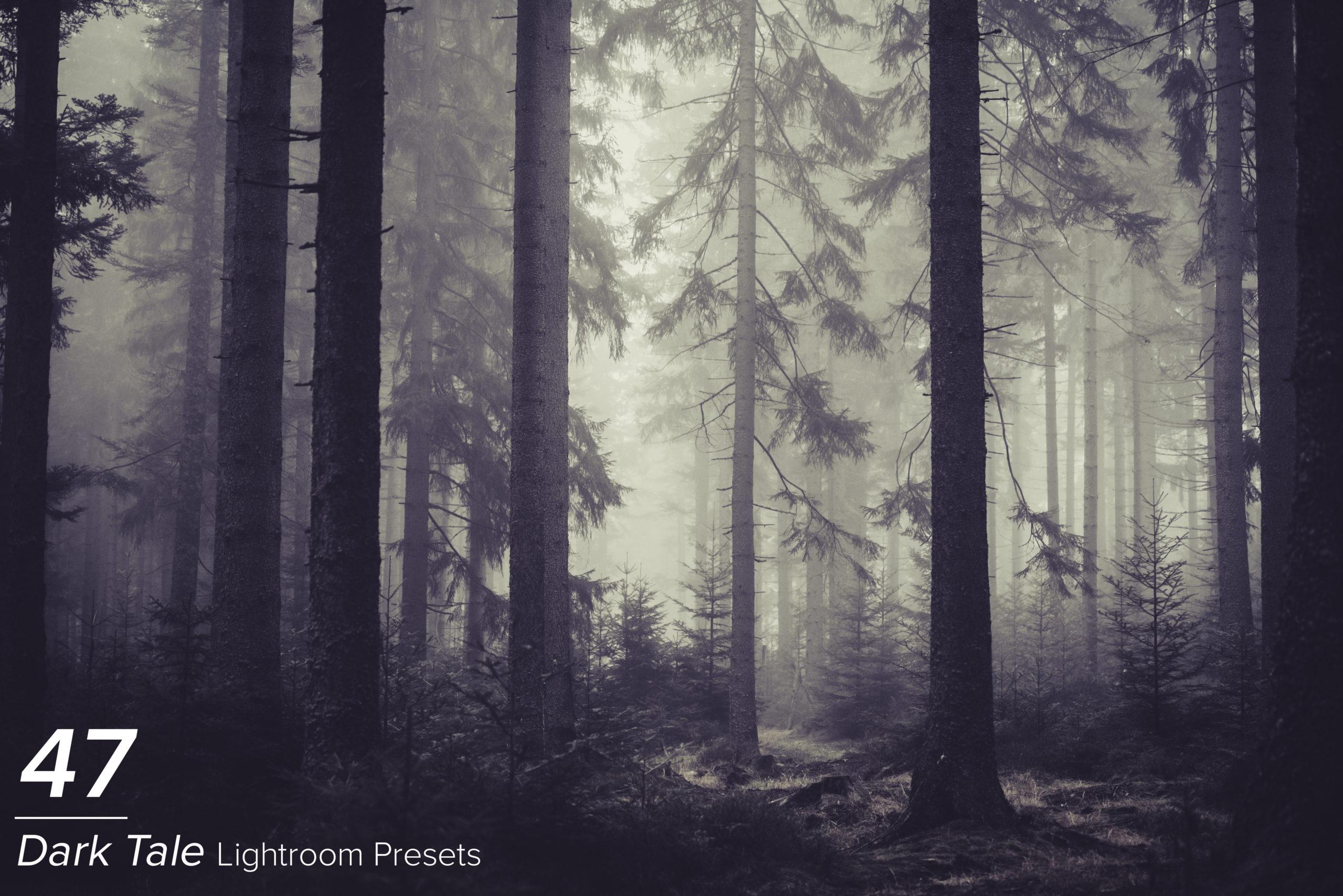 Professional Lightroom Presets - Main Image17 scaled -