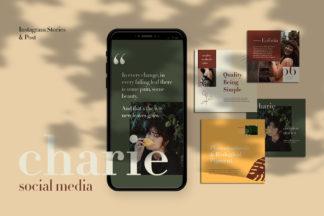 Crella Subscription - theme paper3s3s -