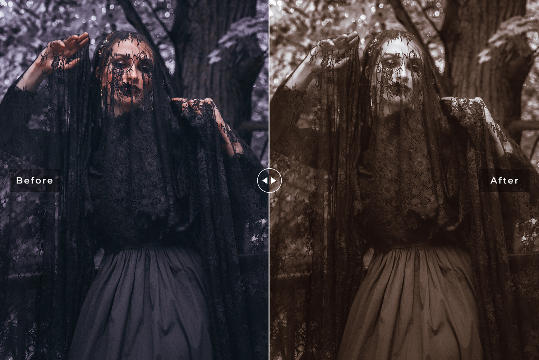 Halloween 2019 Mobile & Desktop Lightroom Presets - Preview 39 -