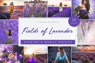 Sunset Lightroom Presets - Fields of Lavender LR -
