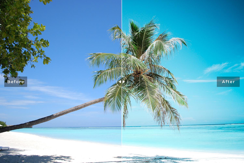 Topanga Mobile & Desktop Lightroom Presets - Preview 314 -