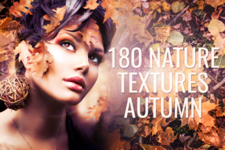 Forest Lightroom Presets - autumn textures -