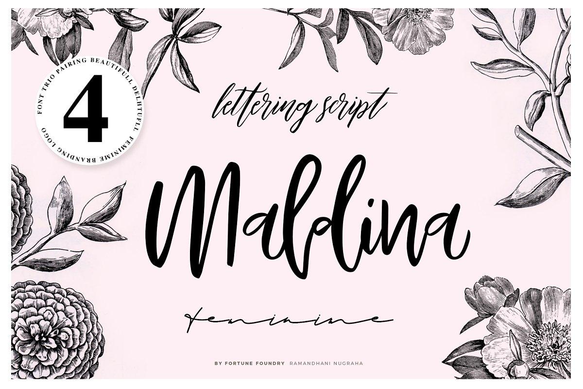 Maldina Fonts - 177 -