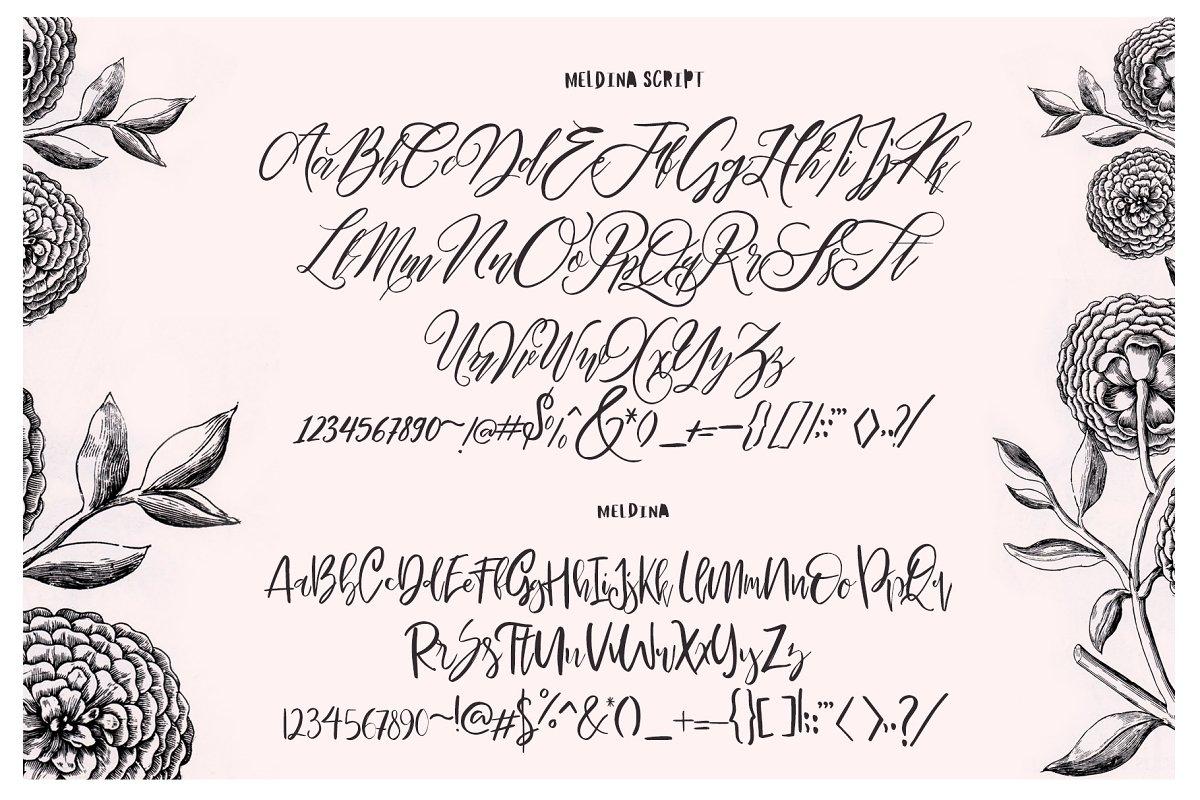 Maldina Fonts - 9 -