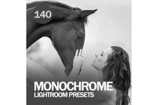Black And White Lightroom Presets - Preview UTAMA 39 -