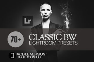 Black And White Lightroom Presets - preview 189 -