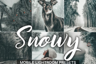 Nature Lightroom Presets - Snowy presets cover product -
