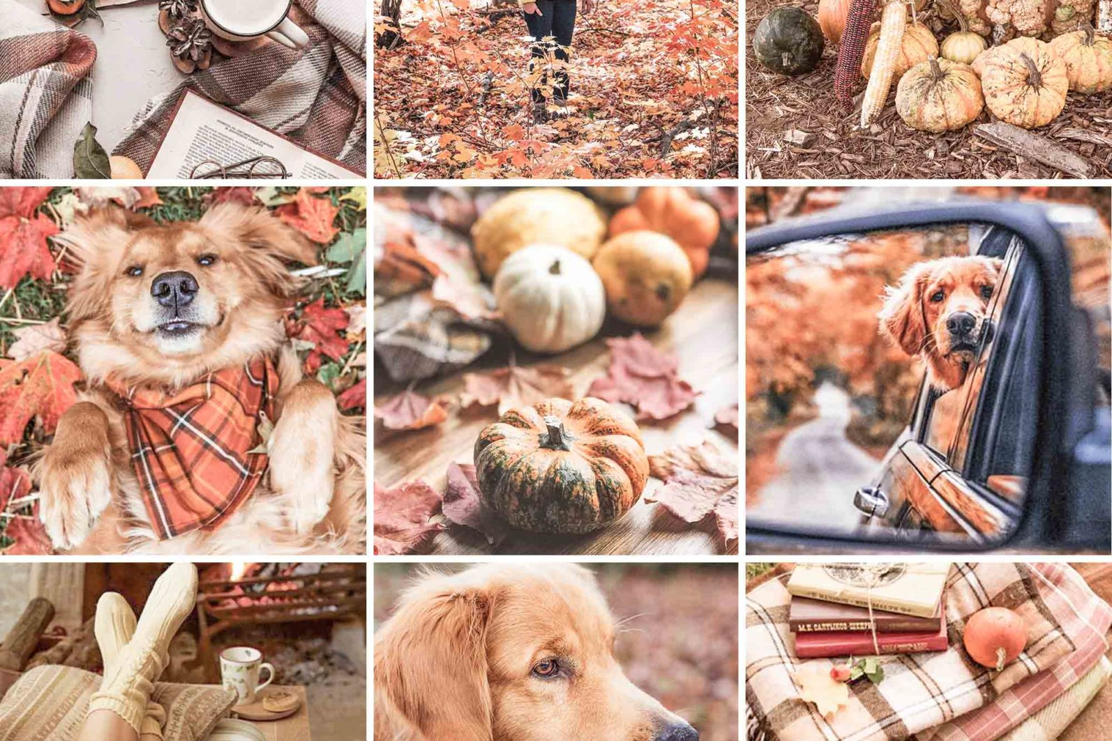 15 Mobile Presets FALL - lightroom presets cover product 1 8 -