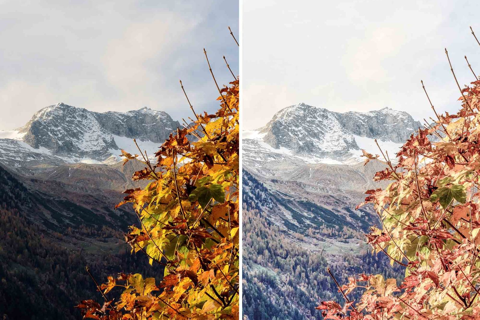 15 Mobile Presets FALL - lightroom presets cover product 6 8 -