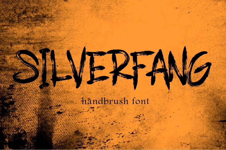 Brush Font Bundle - 45 Fonts - COVER SILVERFANG -