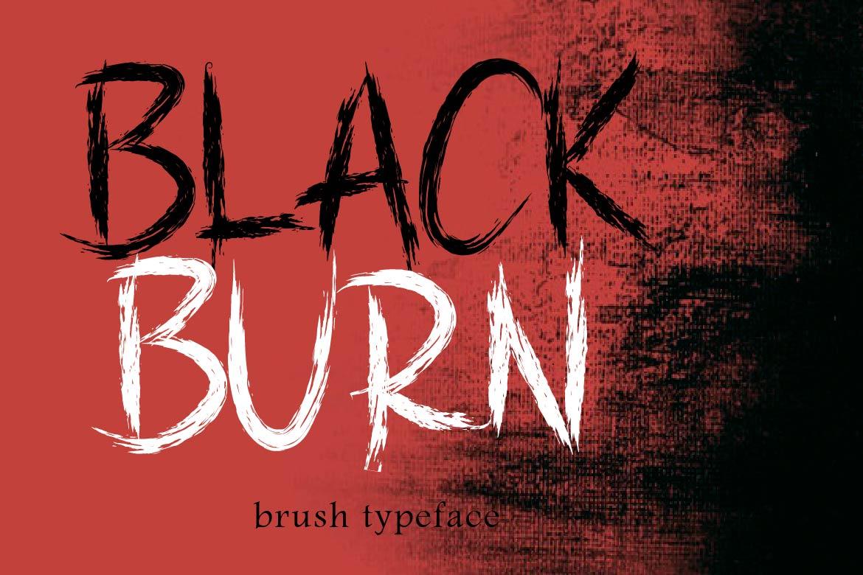 Brush Font Bundle - 45 Fonts - BLACKBURN COVER -