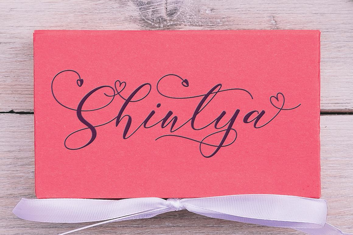 Special Font Bundle - 12 3 -