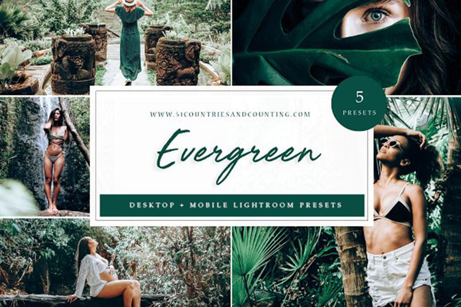 65 x Lightroom Presets (Mobile and Desktop Bundle) inspired by Spring - Evergreen Desktop -