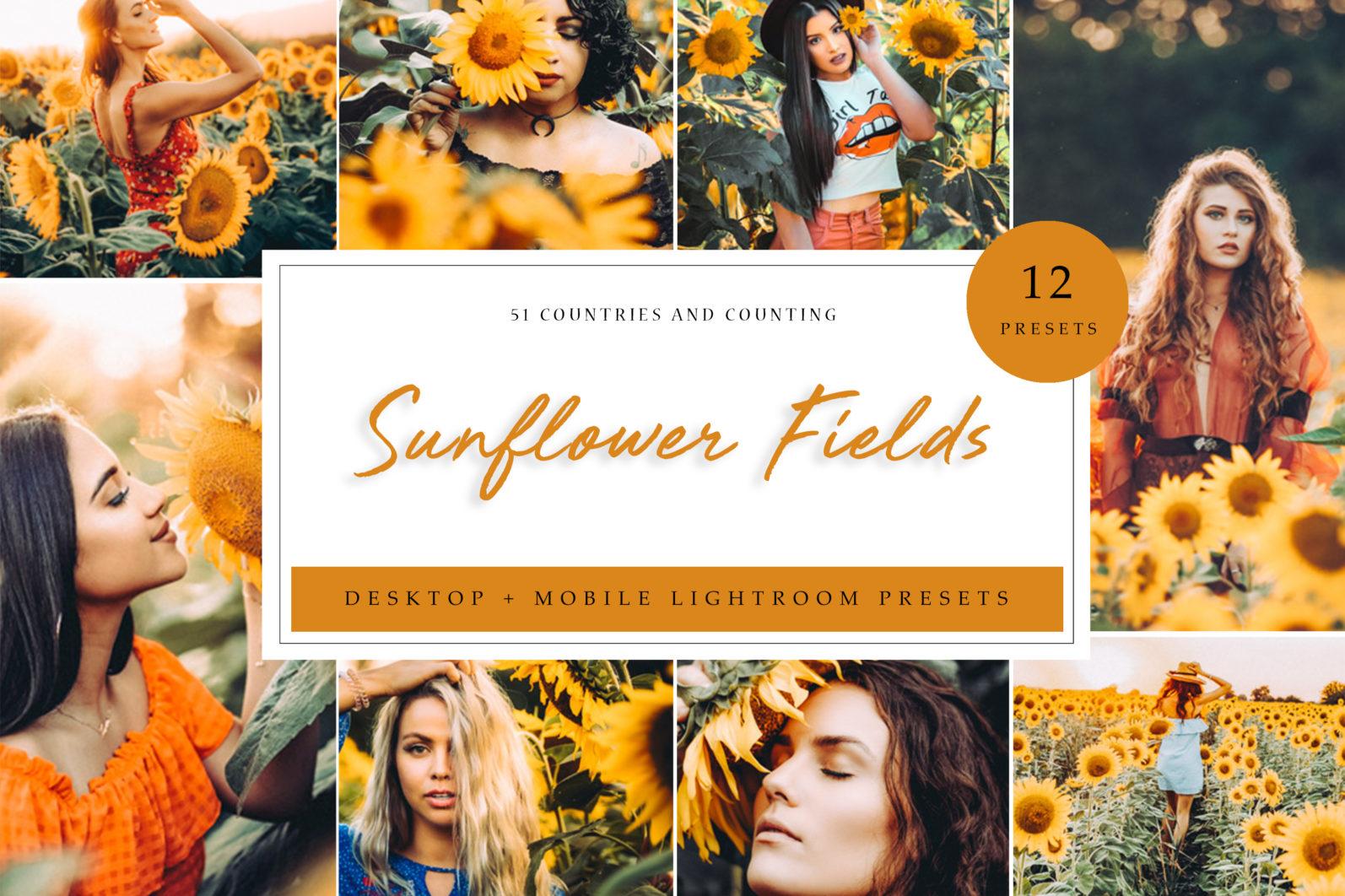 65 x Lightroom Presets (Mobile and Desktop Bundle) inspired by Spring - Sunflower Fields Desktop scaled -