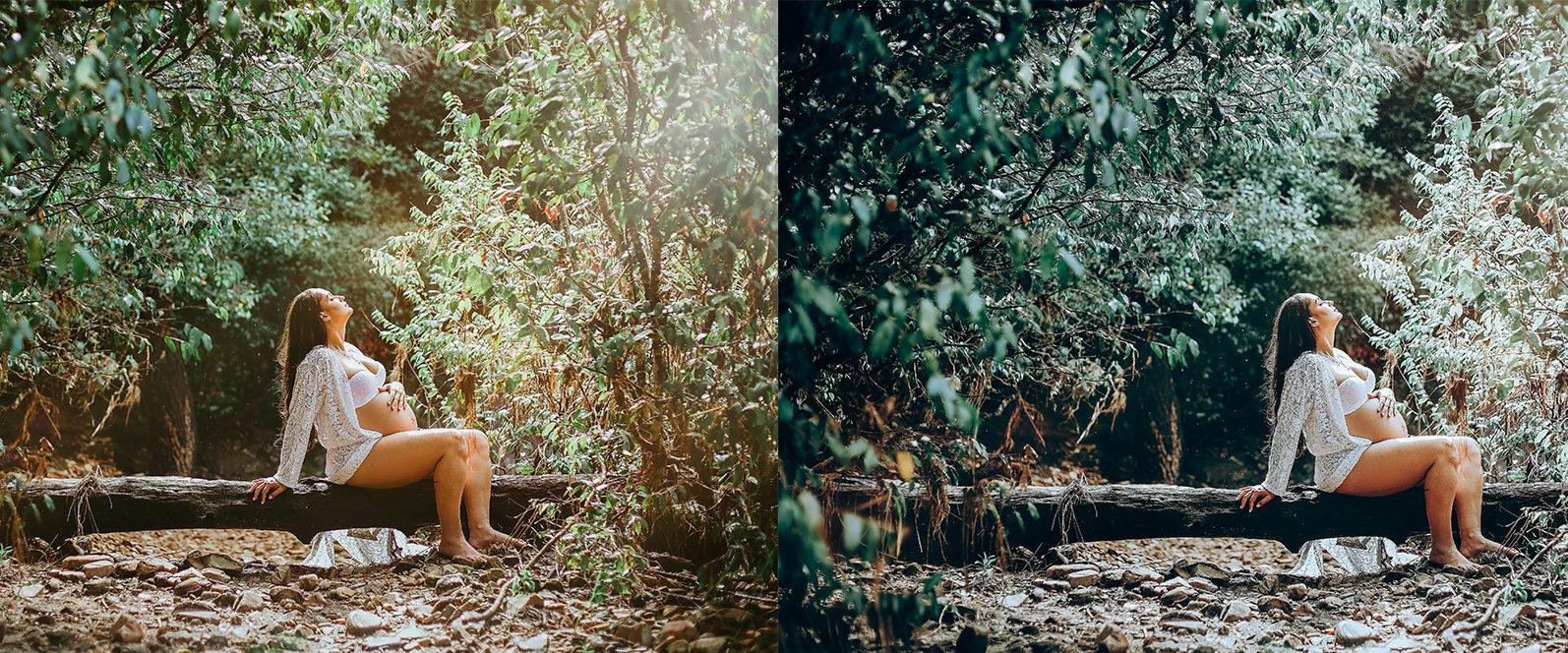 65 x Lightroom Presets (Mobile and Desktop Bundle) inspired by Spring - 4 Evergreen -