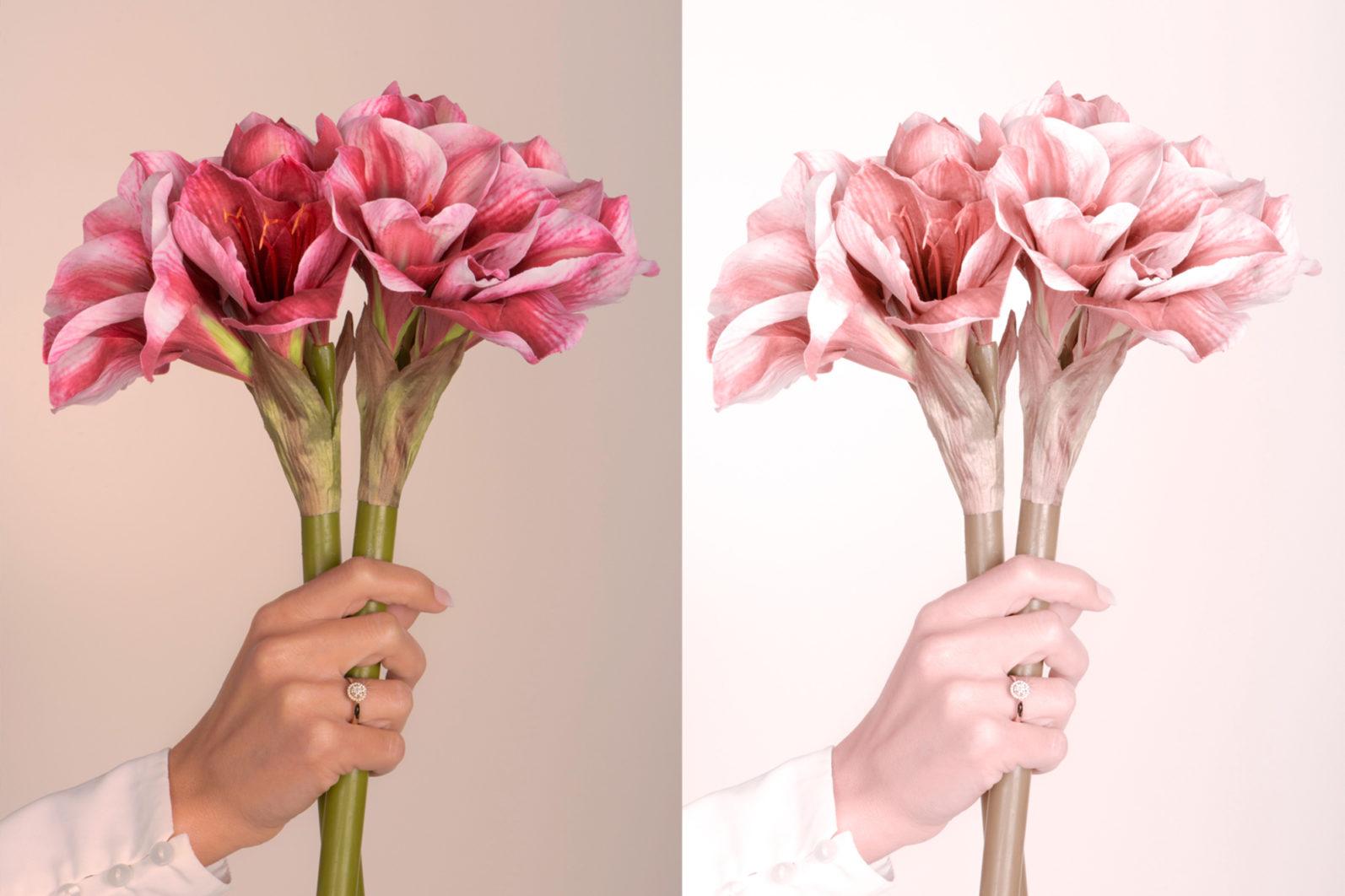 65 x Lightroom Presets (Mobile and Desktop Bundle) inspired by Spring - 1 Blush -