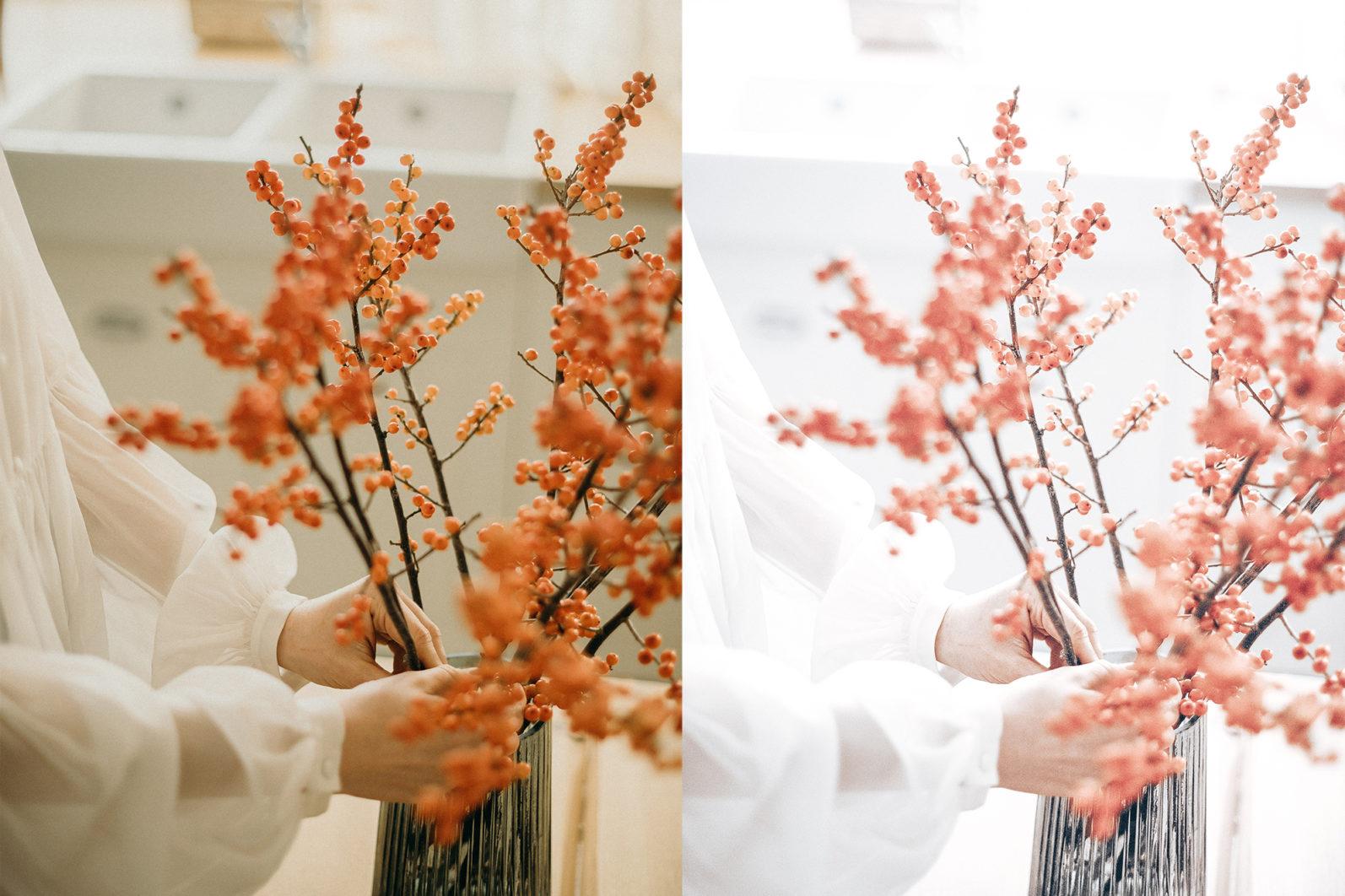 65 x Lightroom Presets (Mobile and Desktop Bundle) inspired by Spring - 1 Floristry -