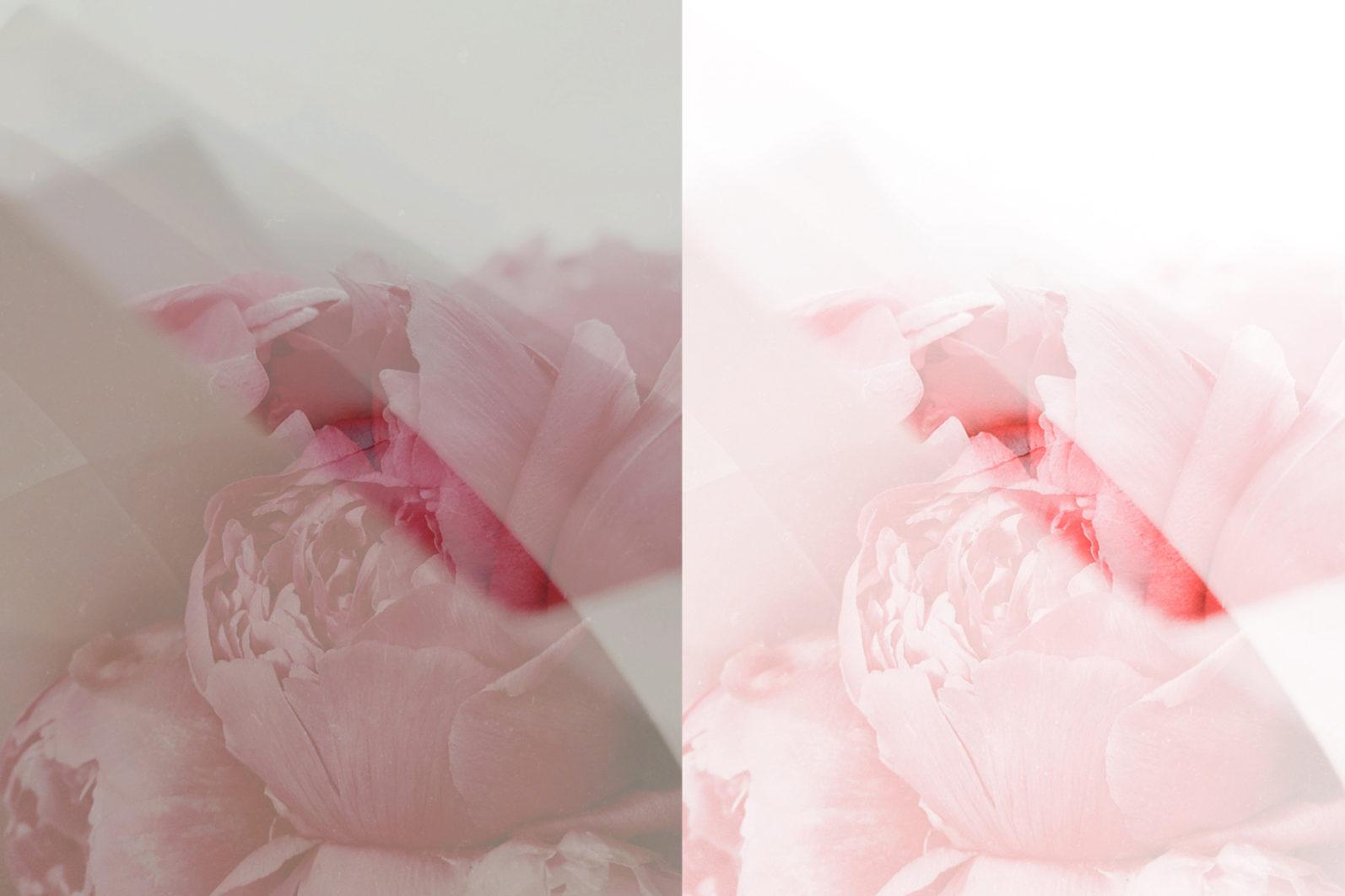 65 x Lightroom Presets (Mobile and Desktop Bundle) inspired by Spring - 10 Blush -