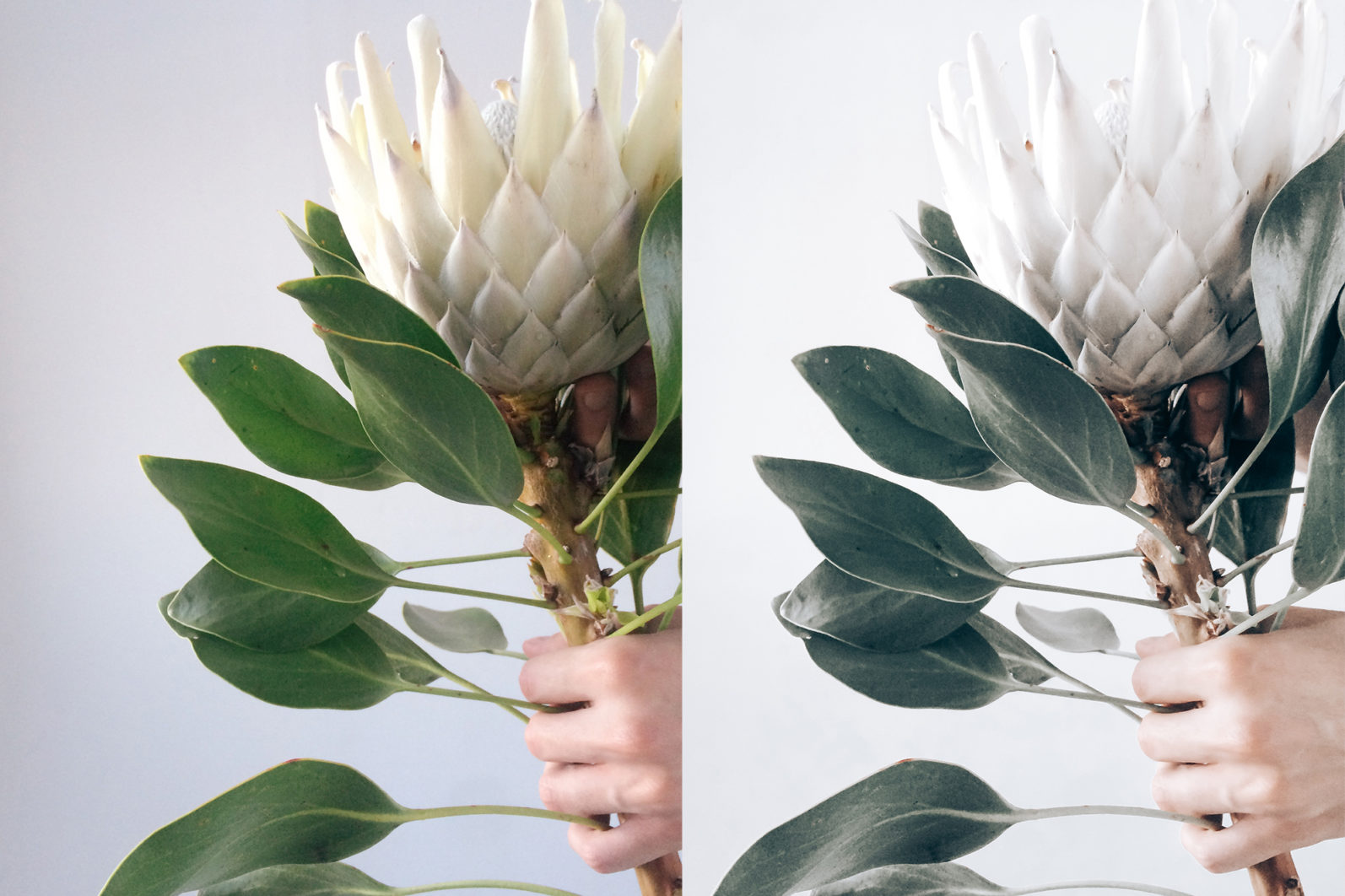 12 x Lightroom Presets | Minimalistic White | Mobile + Desktop - 11 Minimalist White -