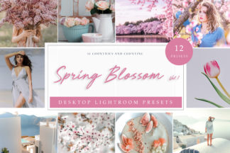 Pastel Lightroom Presets - Spring Blossom LR -