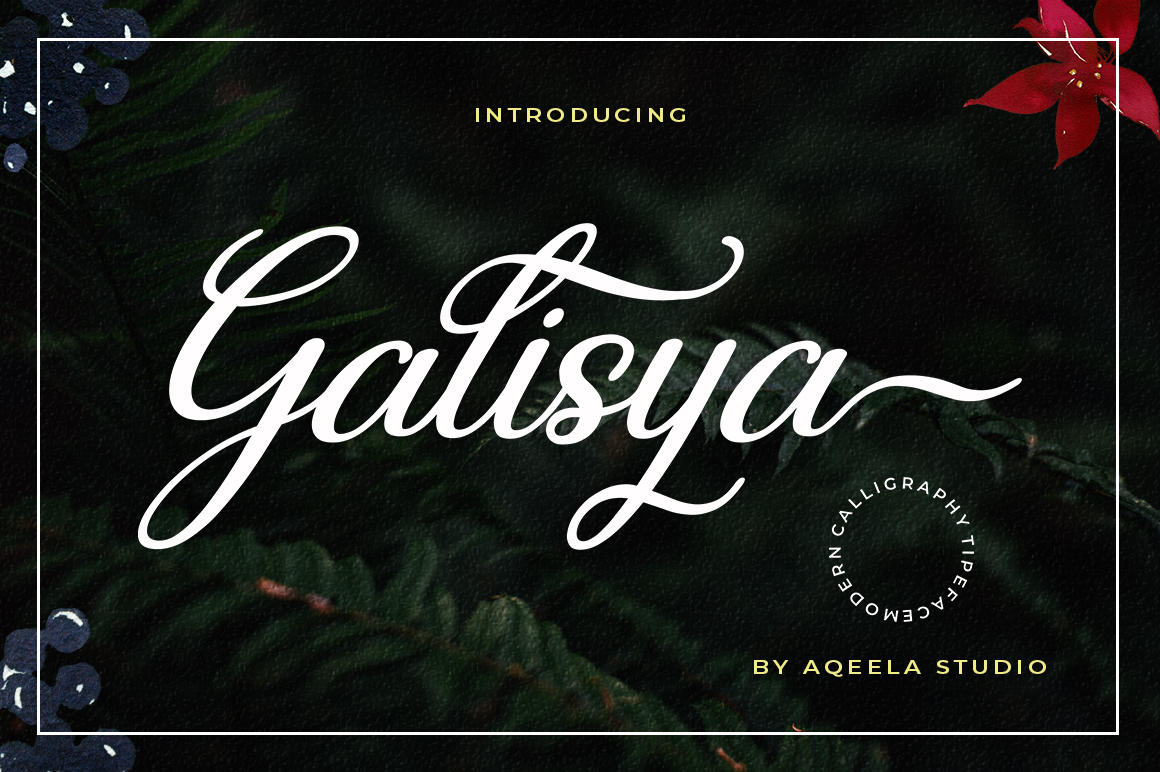 Bundles Creative Fonts for New Projects - 2 396 -